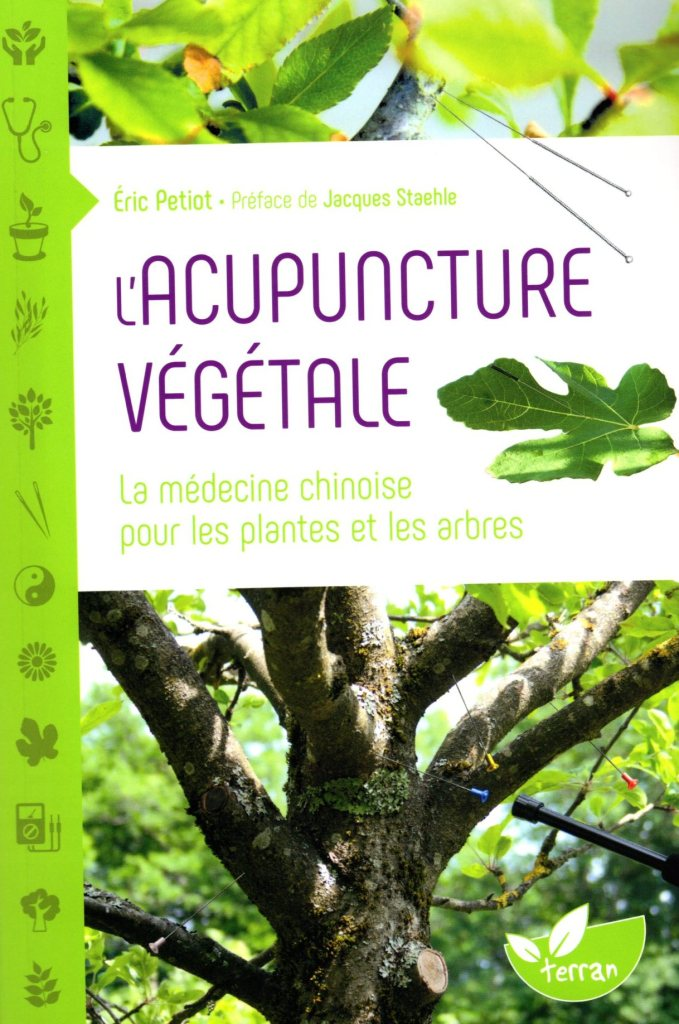 http://www.radio-couleur-chartreuse.org/wp-content/uploads/2020/06/acupuncture-v%C3%A9g%C3%A9tale.jpg